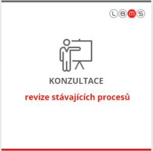 konzultace a revize modelování procesů