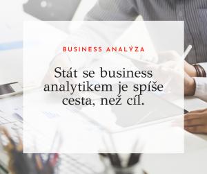 business analytik pozice